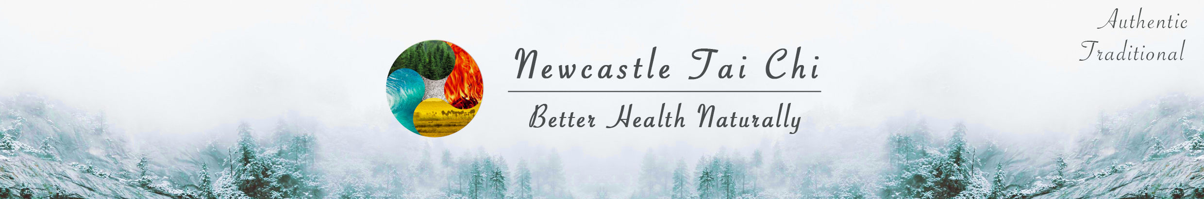 Newcastle Tai Chi